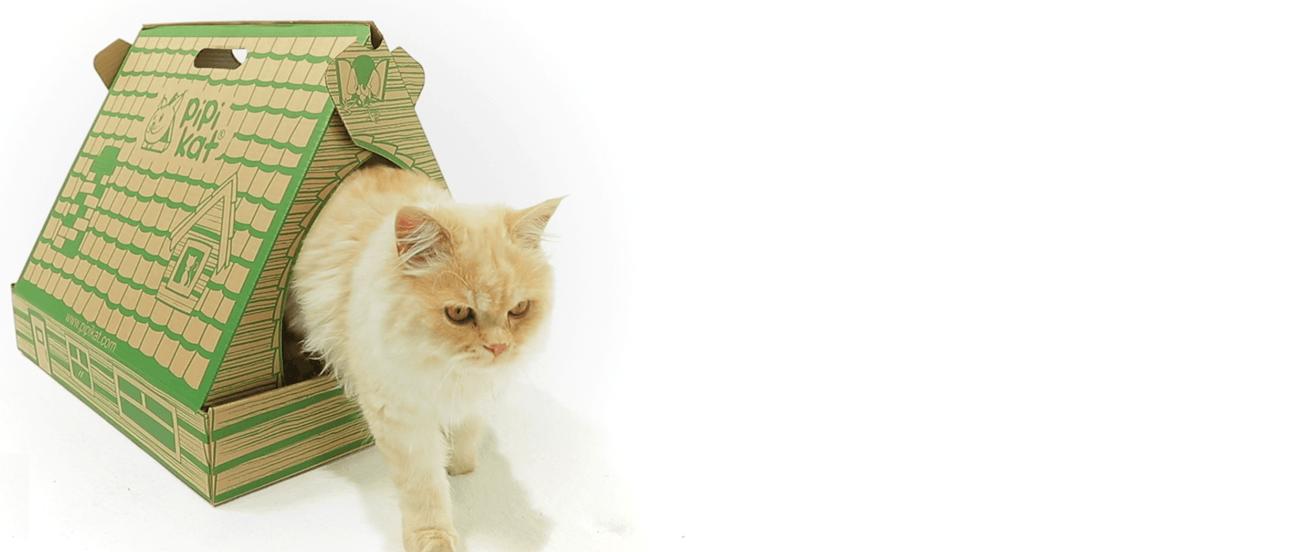 Pipikat Arenero para Gato